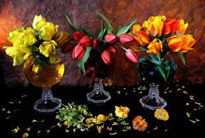 Картинки Тюльпаны Натюрморт Ваза Цветы