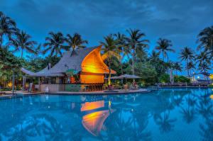 Фотография Тропики Курорты Плавательный бассейн Бунгало Пальмы