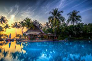 Картинка Тропики Курорты Бунгало Плавательный бассейн Пальмы HDRI