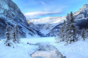Фотография Зимние Канада Горы Озеро Парки Пейзаж Снегу Банф Louise Yoho Природа