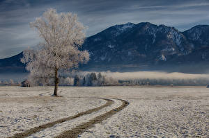 Фотография Германия Горы Дороги Бавария Деревья Снег Природа