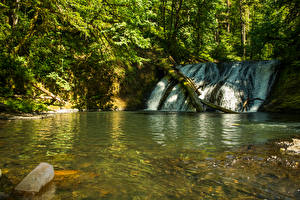 Обои США Парки Водопады Silver Falls State Park Природа