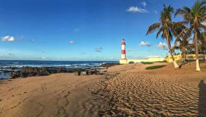Картинка Бразилия Побережье Маяки Пейзаж Небо Пальмы Пляж Salvador Bahia Природа