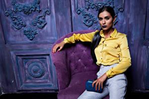 Фотографии Кресло Рубашка Брюнетка молодые женщины