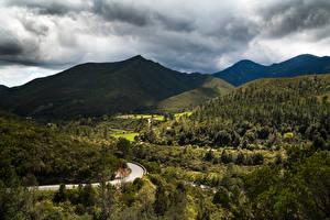 Фотографии Франция Пейзаж Горы Леса Дороги Corsica Природа
