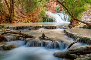 Фотографии США Водопады Реки Гранд-Каньон парк Beaver Falls Природа