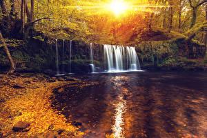 Картинки Водопады Осень Леса Рассветы и закаты Природа