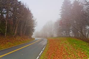 Фото Дороги Осенние Тумане Природа