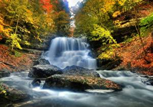Обои Осень Леса Водопады Реки Природа фото