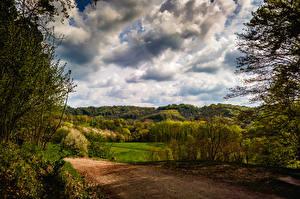 Фотография Германия Пейзаж Лес Дороги Облачно Kaiserstuhl hills Природа