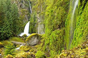 Обои США Водопады Камни Скала Мох Wahclella Falls Columbia River Oregon Природа