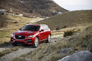 Фотографии Jaguar Красных Металлик 2016 F-Pace R-Sport машина