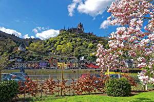 Фотографии Германия Весна Дома Замки Цветущие деревья Кохем Кустов