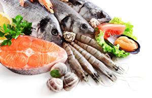 Картинка Морепродукты Рыба Продукты питания