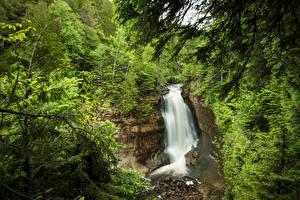 Картинки Штаты Парк Водопады Скалы Дерева Miners Falls Pictured Rocks National Lakeshore Природа