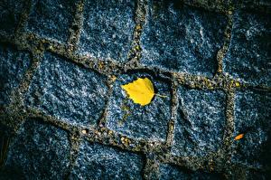 Обои Камни Текстура Тротуар