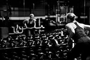 Фотография Фитнес Зеркало Гантели Отражение Спорт Девушки
