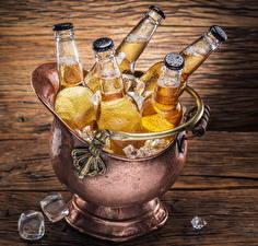 Картинка Напиток Пиво Бутылка Лед Еда
