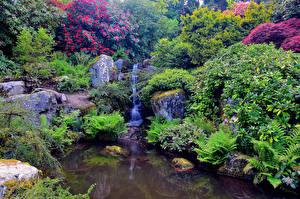 Обои США Сады Пруд Сиэтл Ручей The Kubota Washington Природа
