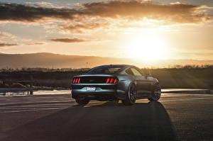Картинка Форд Сзади Mustang 2015 GT Velgen авто