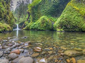 Фотографии Водопады Камень Реки США Punchbowl Falls, Columbia River Gorge