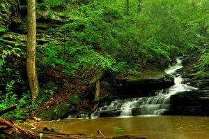 Обои Водопады Ручей