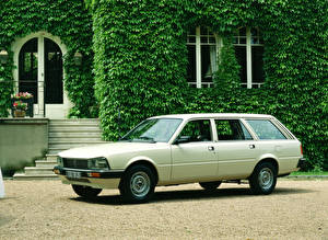 Картинки Peugeot Ретро Белых 1986-92 505 Break Worldwide авто