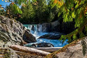 Фото Канада Реки Водопады Камень Деревья Cheakamus River British Columbia