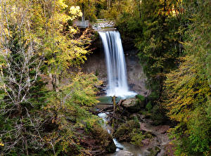 Фотография Леса Водопады Природа