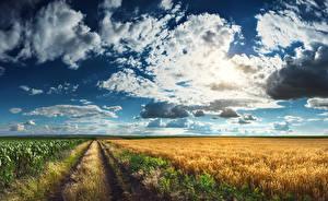 Фотография Пейзаж Поля Небо Дороги Облако Трава Природа