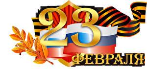 Обои Праздники День защитника Отечества Белый фон