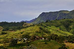 Обои Пейзаж Горы Поля Луга Колумбия Природа