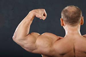 Картинки Мужчины Бодибилдинг Спина Мышцы muscles