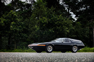 Фотографии Феррари Винтаж Черный Металлик 1975 365 GTB 4 Panther Shooting Brake
