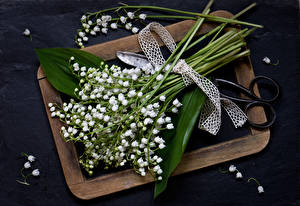 Обои Букеты Ландыши Цветы