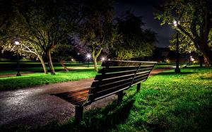 Фотография Англия Парки Лондоне Ночь Скамейка Дерево Трава Primrose Hill Природа