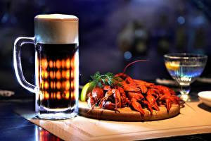 Фото Напитки Пиво Раки Кружка Пена Продукты питания