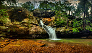 Фотографии США Парк Водопады Утес Hocking Hills State Park Logan Ohio Природа