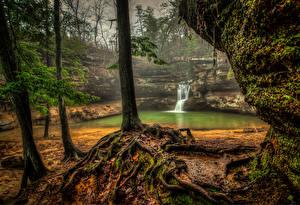 Обои Водопады США Деревья HDR Upper Falls Old Mans Cave Hocking Hills State Park Природа фото