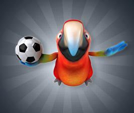 Картинка Птицы Попугаи Футбол Клюв Мяч 3D Графика Животные