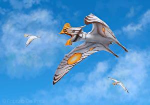 Обои Древние животные Динозавры Небо Полет Tapejara Животные фото