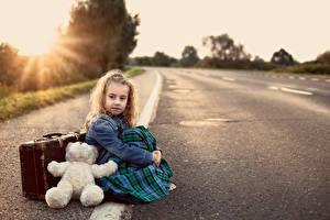 Фотография Дороги Мишки Девочки Сидящие Чемодан Асфальт Дети