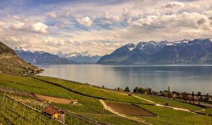Фотография Швейцария Пейзаж Озеро Горы Поля Облака Природа