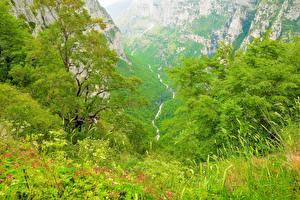 Обои Греция Горы Трава Voidomatis Природа фото