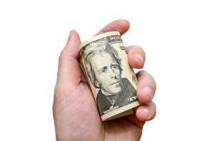 Обои Доллары Деньги Купюры Руки Белый фон фото