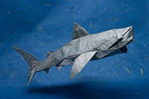 Картинки Акулы Оригами Бумага