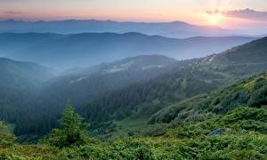 Фото Украина Горы Рассветы и закаты Леса Карпаты Природа