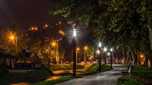 Фотография Хорватия Парки Загреб Дерево Скамейка Ночь Уличные фонари Тротуар Samobor Природа