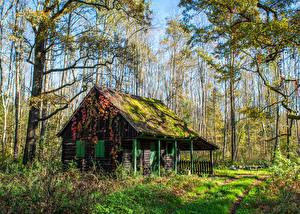 Фотография Хорватия Парк Дома Загреб Деревья Мха Трава Crna Mlaka Природа