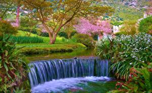 Картинка Сады Водопады Италия Ninfa Cisterna di Latina Природа